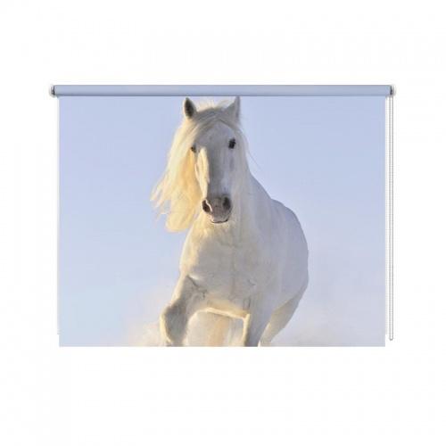 Rolgordijn Paard in sneeuw