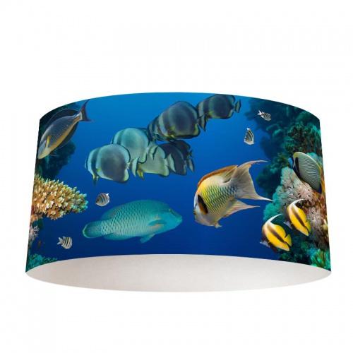 Lampenkap Tropische vissen in oceaan