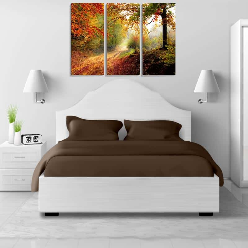 Drieluik canvas Bospaadje in de herfst