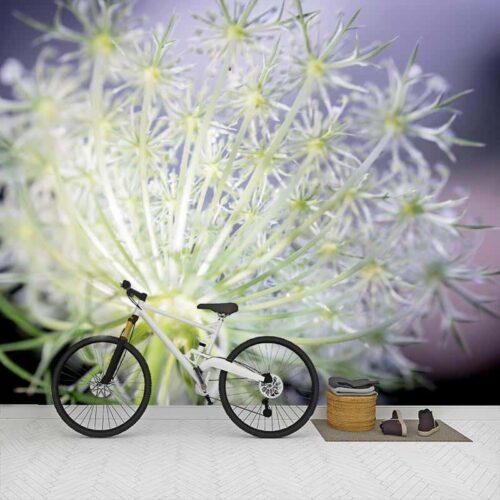 Fotobehang Dille bloem