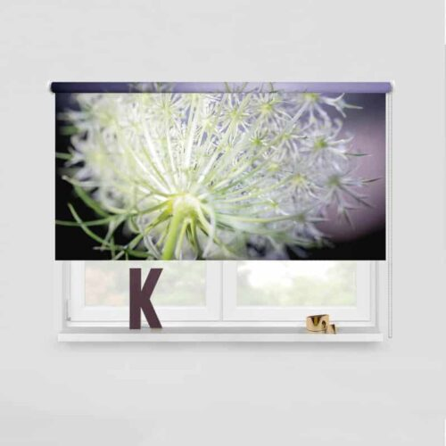 Rolgordijn Dille bloem