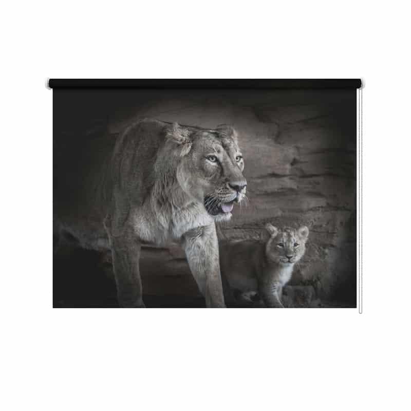 Rolgordijn Leeuw met jong