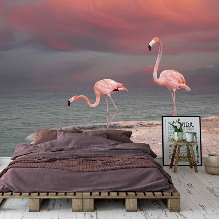Fotobehang Flamingo's aan het water