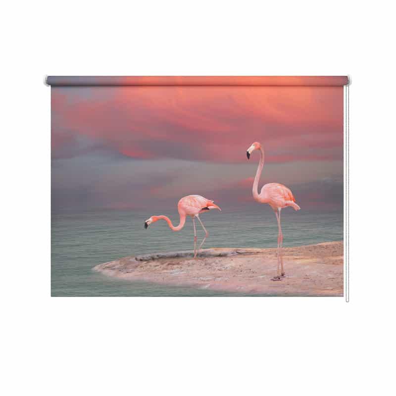 Rolgordijn Flamingo's aan de oever