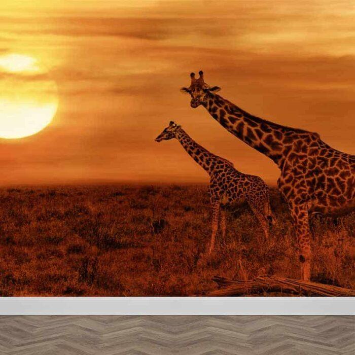 Fotobehang Giraffen in de avondschemer