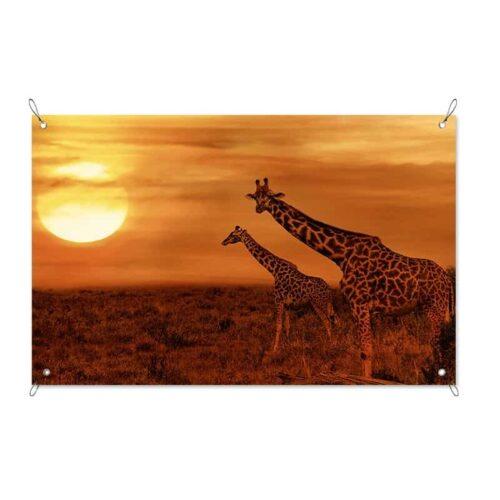 Tuinposter Giraffen in de avondschemer