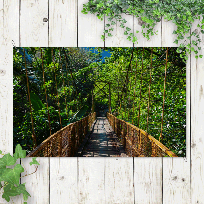 Tuinposter Hangbrug in de jungle