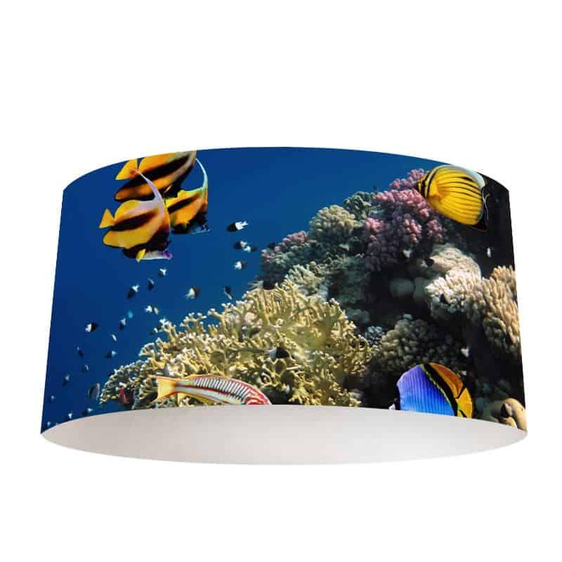 Lampenkap Tropische vissen in aquarium