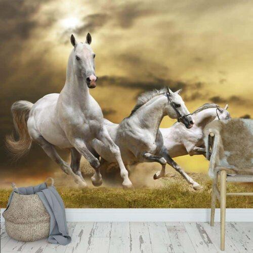 Fotobehang Witte paarden in galop