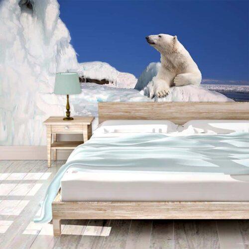 Fotobehang IJsbeer op ijsschots