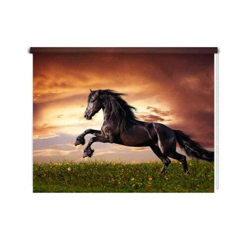 Rolgordijn Fries paard in galop