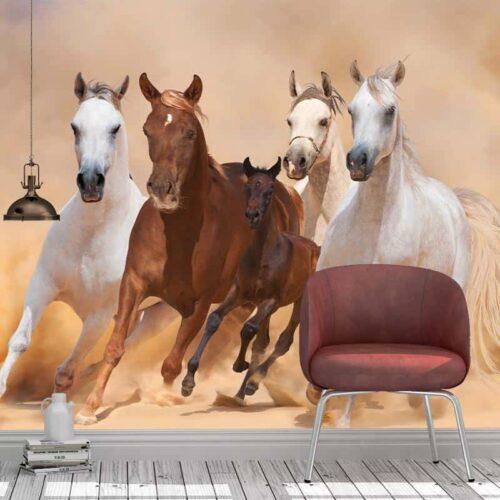 Fotobehang Galopperende paarden met veulen