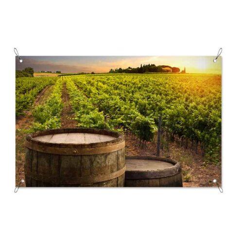 Tuinposter Wijnvaten in de wijngaard