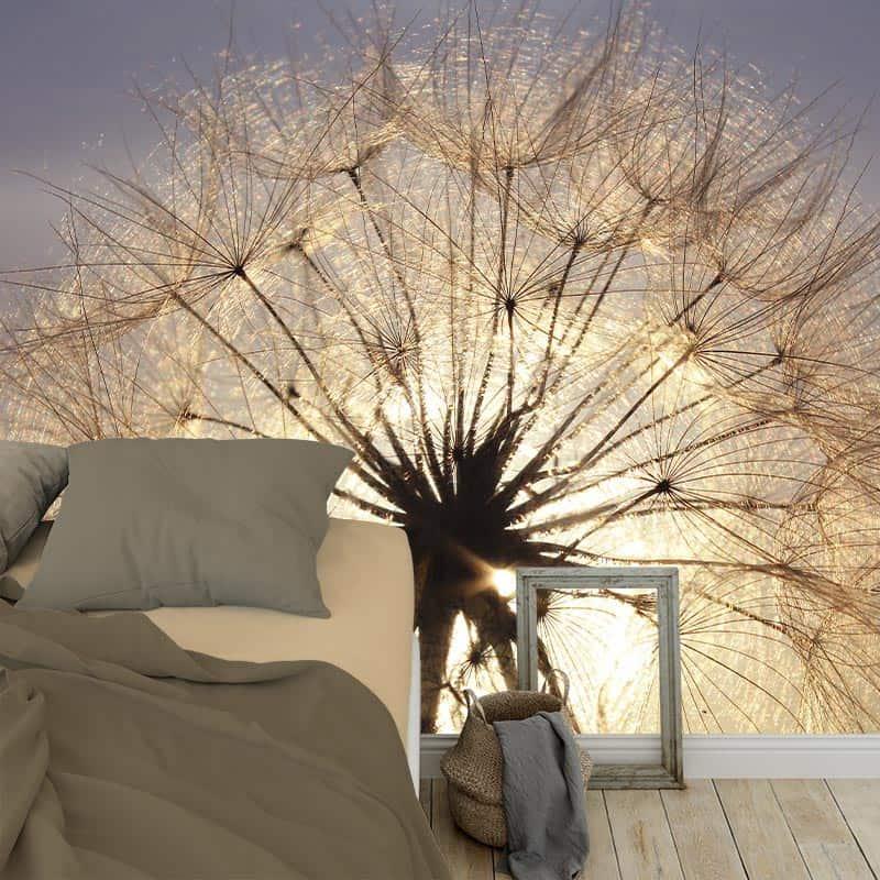 Fotobehang Dandelion in avondschemer