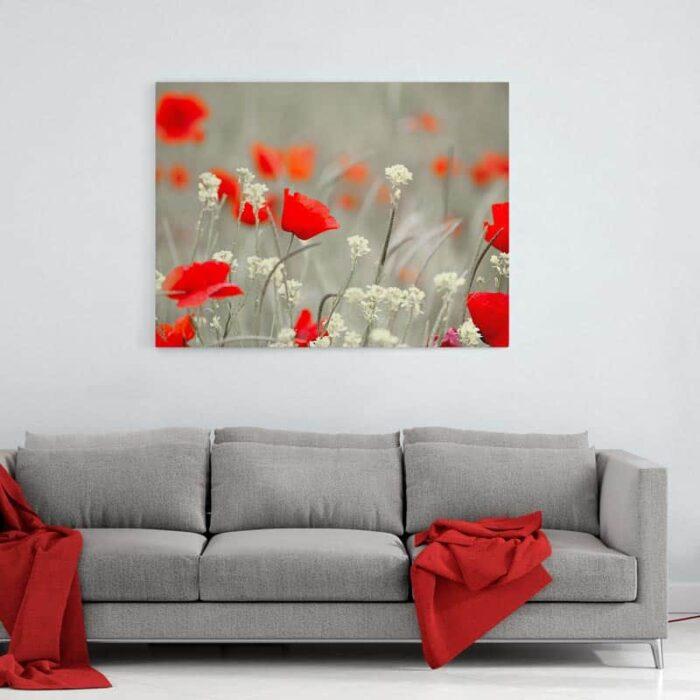 Canvas papaverveld rood grijs wit