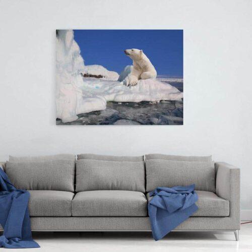 Canvas Ijsbeer op ijsschots