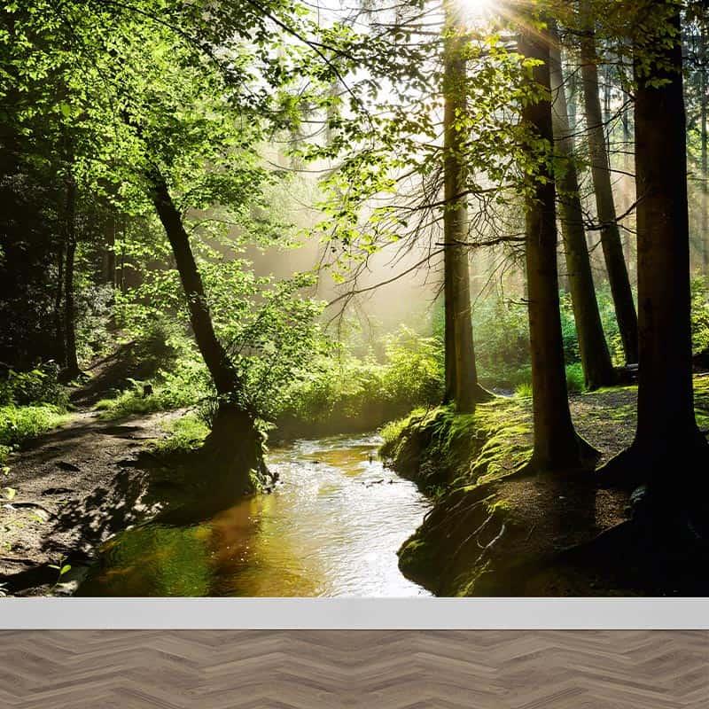 Fotobehang Stroompje in het bos