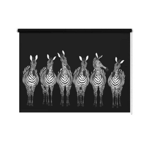 Rolgordijn Getekende zebra's op rij zwart