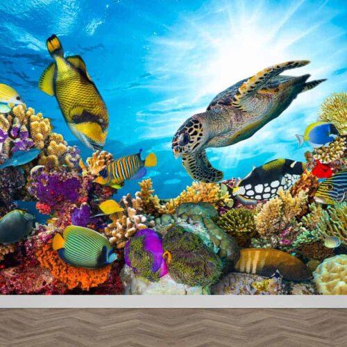 Fotobehang Tropische onderwater wereld
