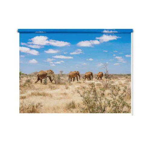 Rolgordijn Olifanten in Afrika