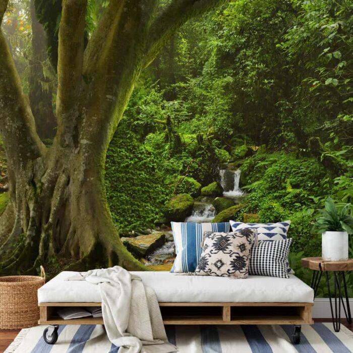 Fotobehang Beek in regenwoud