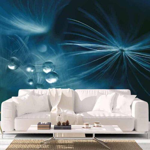 Fotobehang Dandelion detail met waterdruppels