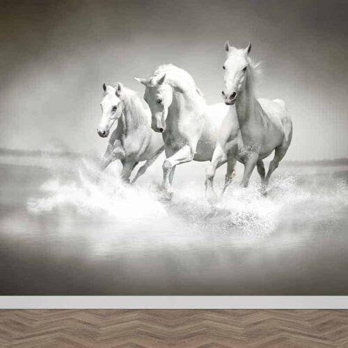 Fotobehang Witte paarden in water