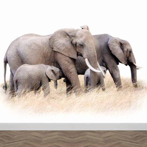 Fotobehang Olifanten familie 4