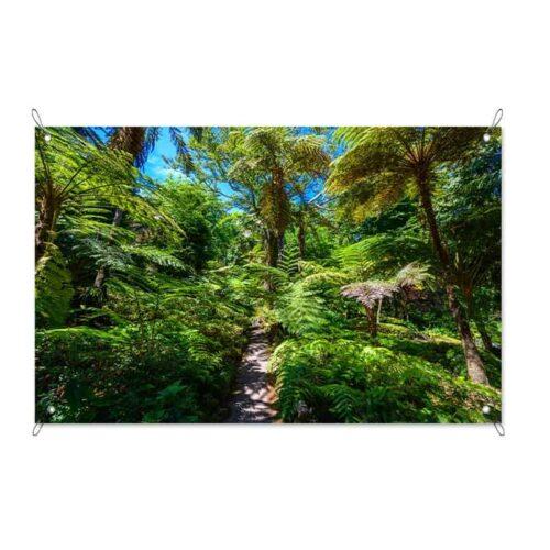 Tuinposter Pad in de jungle