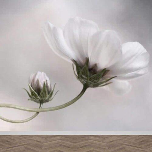 Fotobehang Bloemen in detail