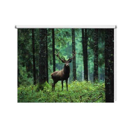 Rolgordijn Damhert in bos