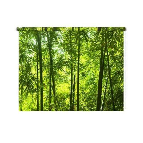 Rolgordijn Bamboe jungle