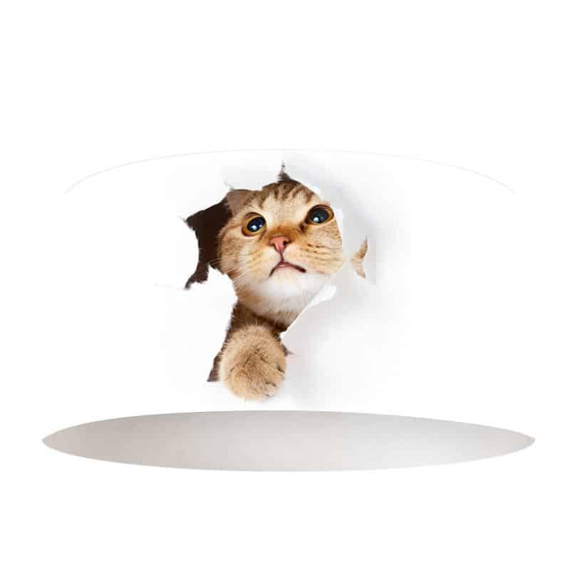 Lampenkap Nieuwsgierige kitten