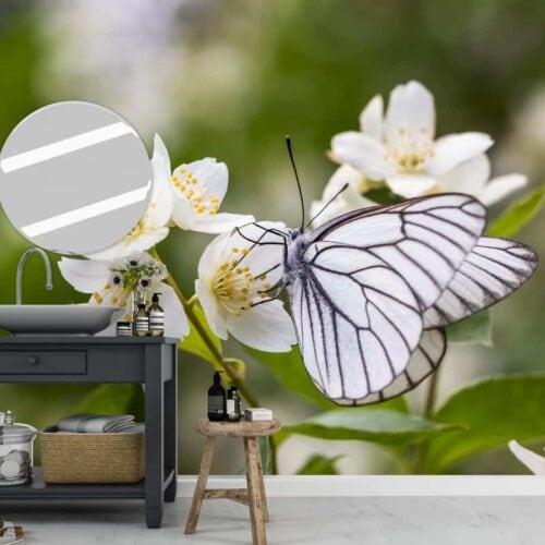 Fotobehang Vlinder op kersenbloesem